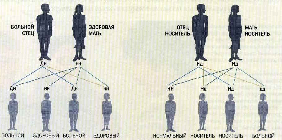 Рак тонкого кишечника: характер проявления и лечение патологии