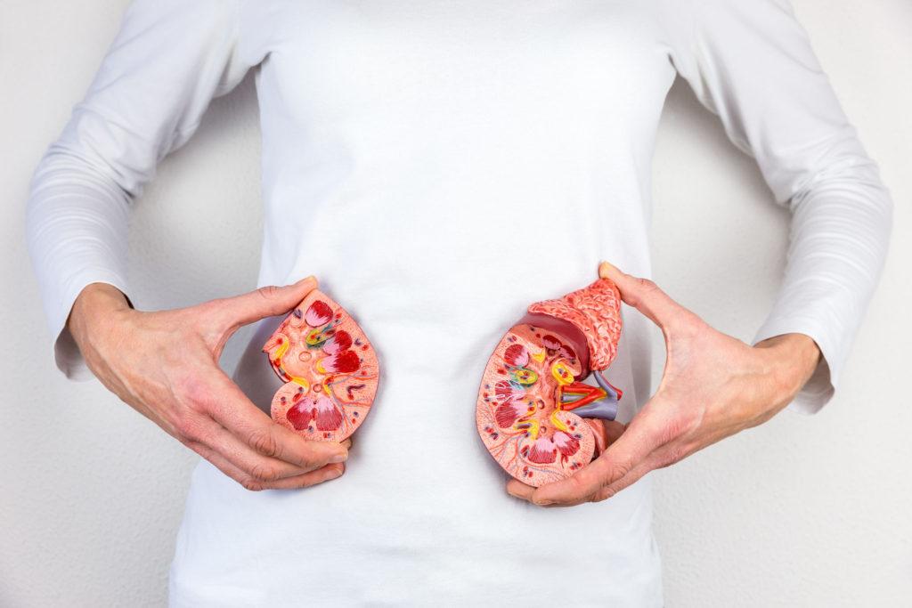 Кето-диета и здоровье почек