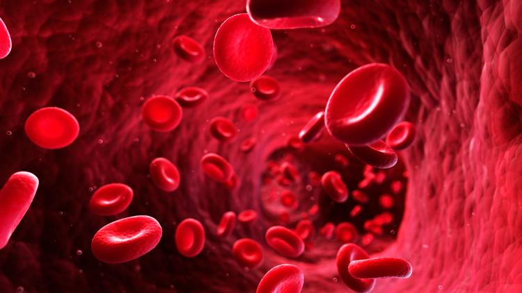 Низкий показатель натрия в крови