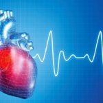 Стабилизируется частота сердечных сокращений