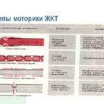 Улучшение перистальтики толстого и тонкого кишечника
